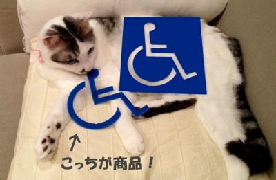 猫レポ:新商品「アクリル切りピクト」