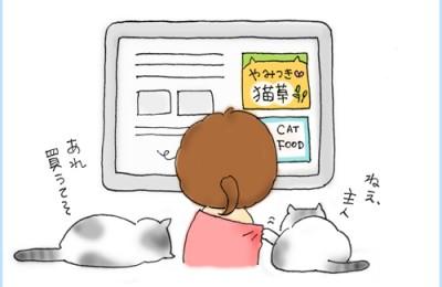 グーグルアナリティクス  ノ  インタレストカテゴリ