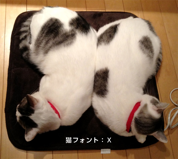 猫2匹フォント