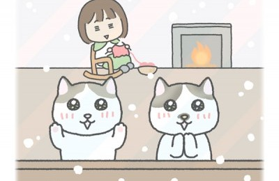 記録的な大雪と猫の本能・・・