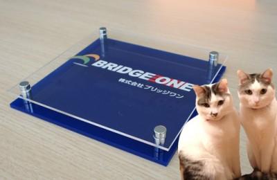 猫レポ:カラフルで個性的な社名板が新登場!!「カラーアクリル社名板」